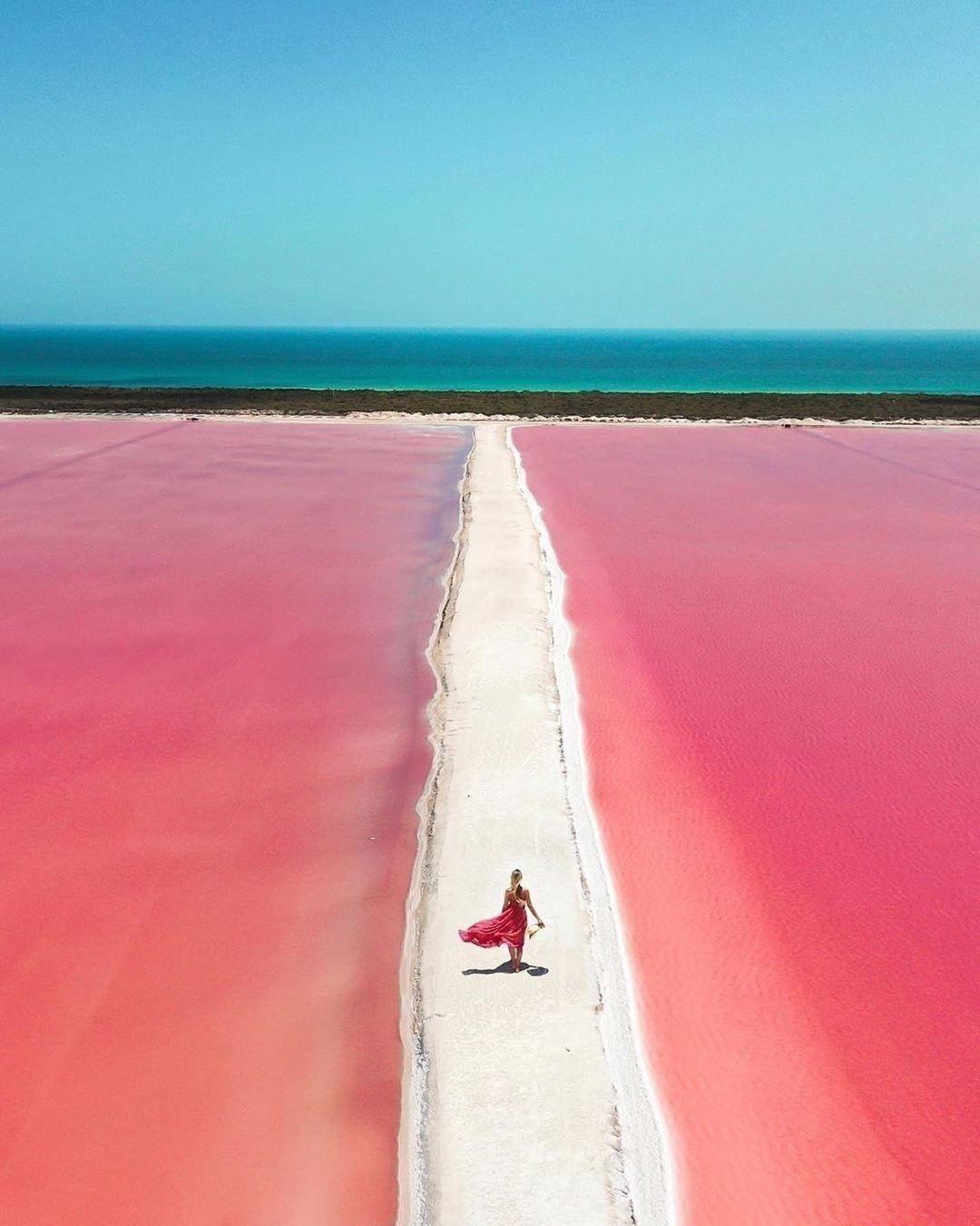 camino de sal en rio lagartos