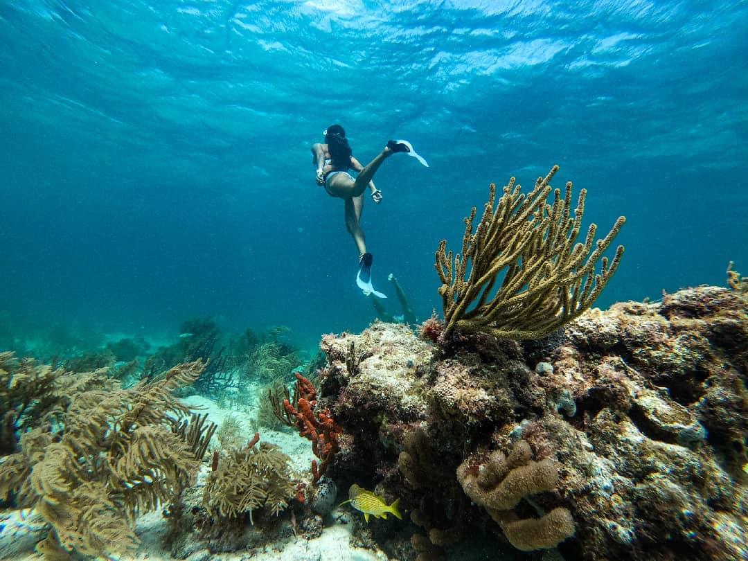 Buceando en Puerto Morelos, Quintana Roo