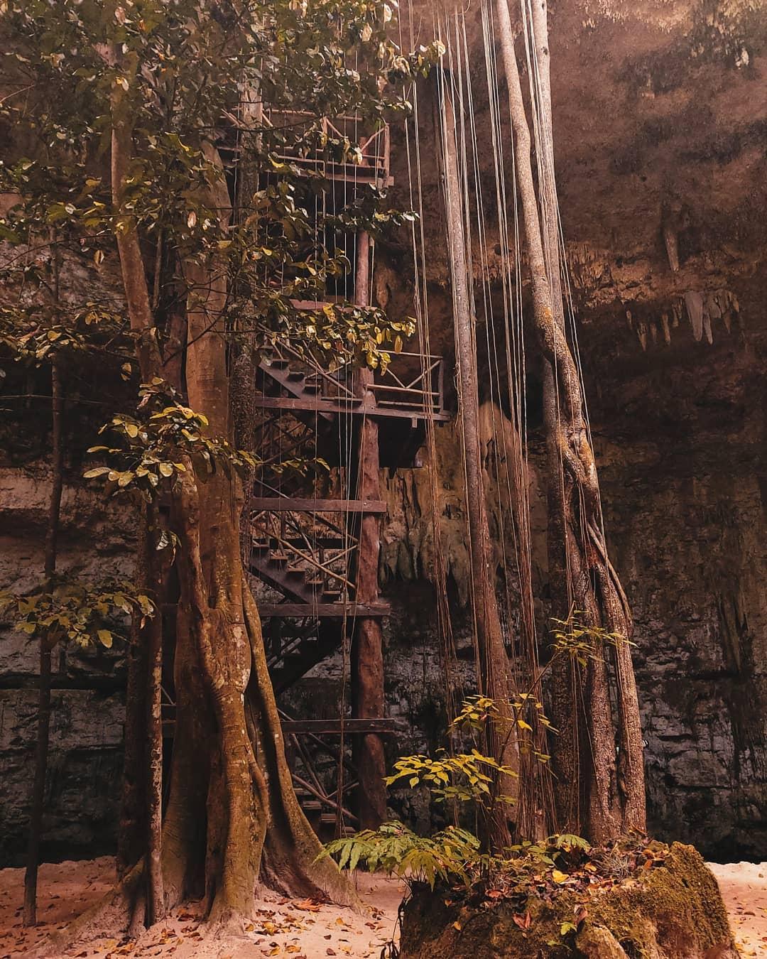 Escaleras del cenote