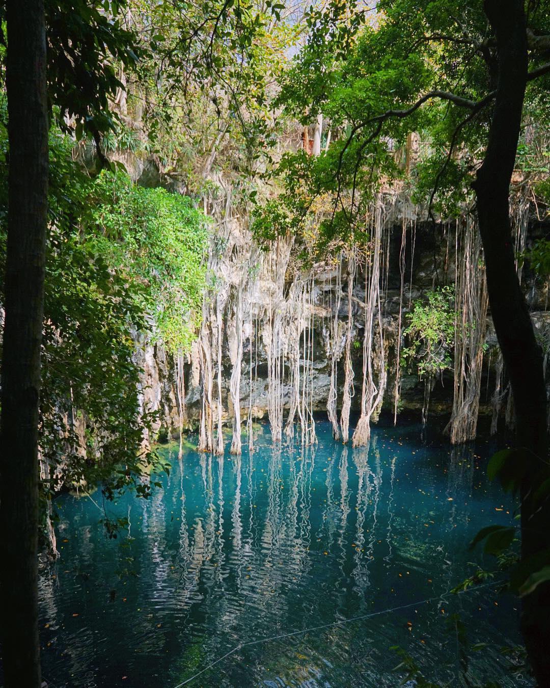 los cenotes mas hermosos de yucatan, cenote yokdzonot, top cenotes, top yucatan