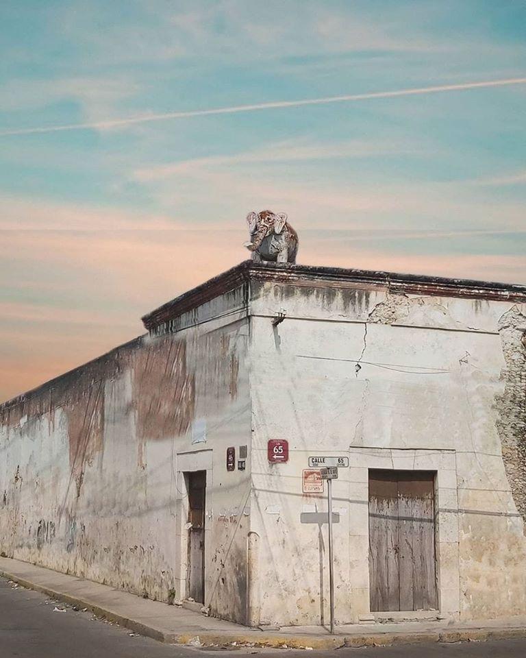 esquina del elefante leyendas de merida yucatan, top yucatan streets calles