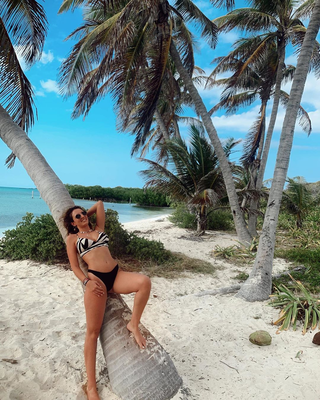 Isla Contoy, TOP yucatan, Contoy Island, the best of the yucatan peninsula