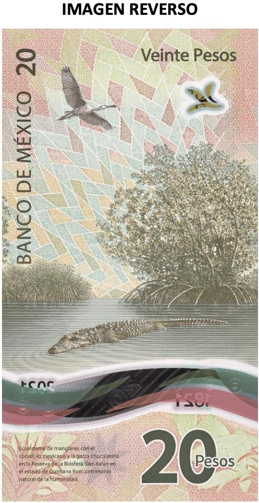 nuevo billete d e20 pesos mexicanos
