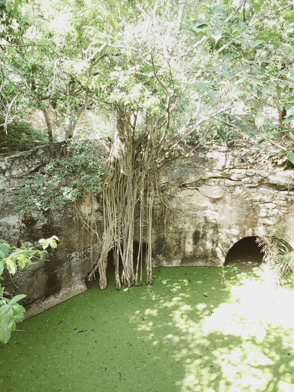 pasadizos en merida en yucatan