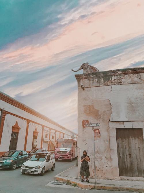 esquina del elefante, calles de merida yucatan, top yucatan, merida yucatan streets downtonw