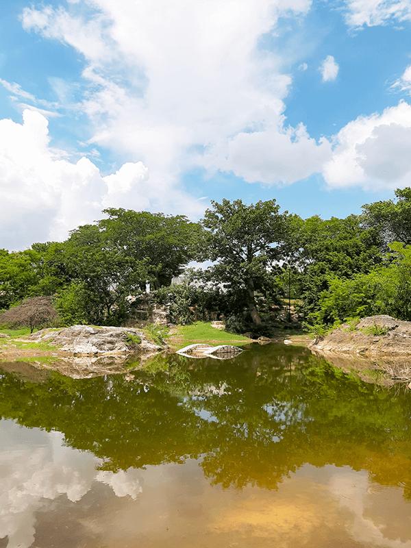 parque japones merida puente aguada top yucatan