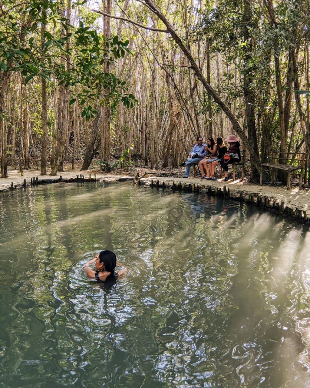 top yucatan cenotes, el corchito de progreso yucatan, como llegar