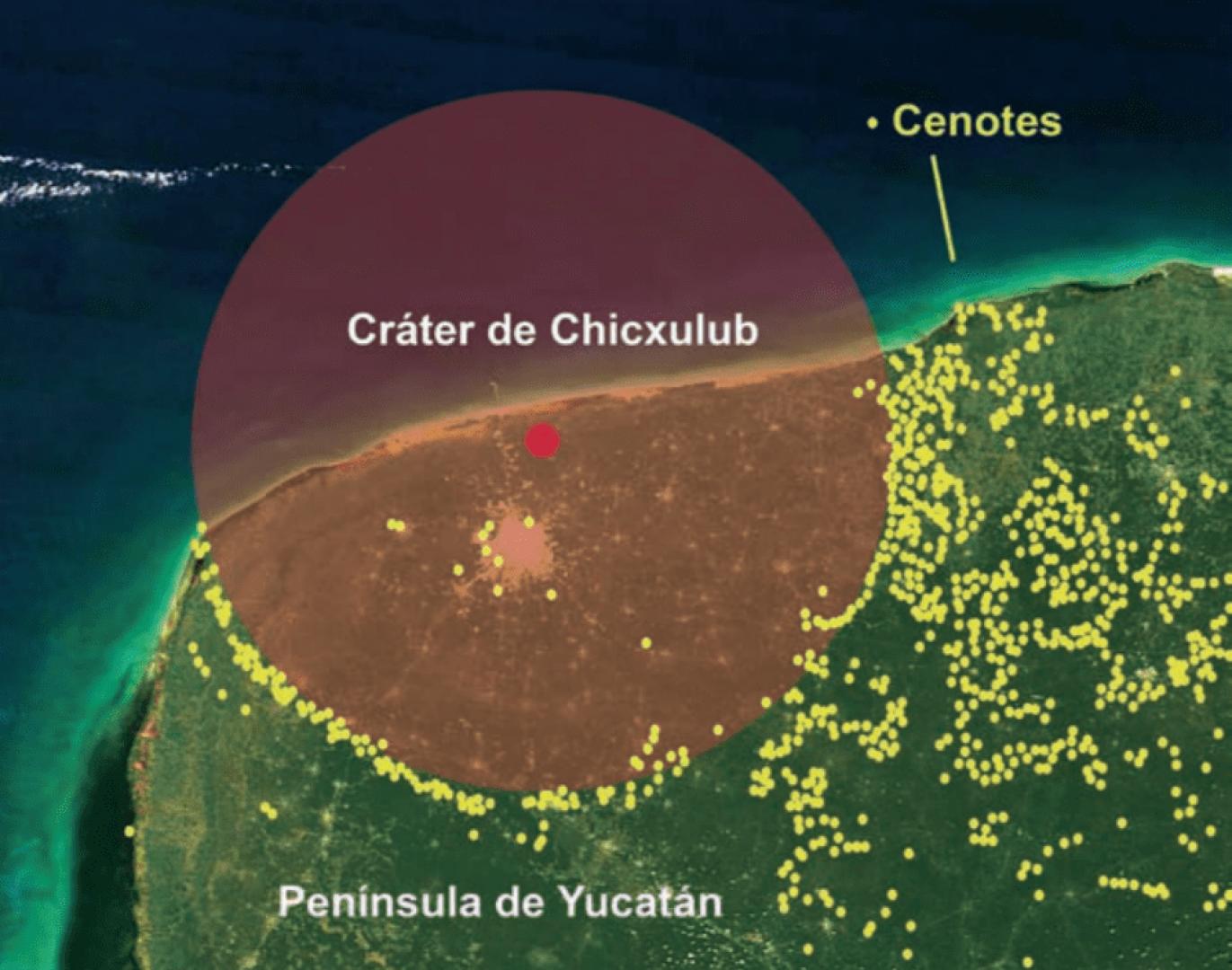 Anillo de Cenotes, el resultado del Meteorito