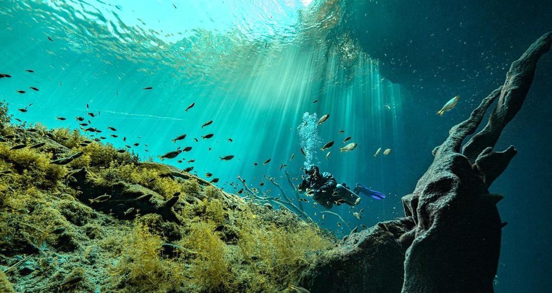 Cenote Carwash, El lavadero de Taxis que se convirtió en un destino turístico