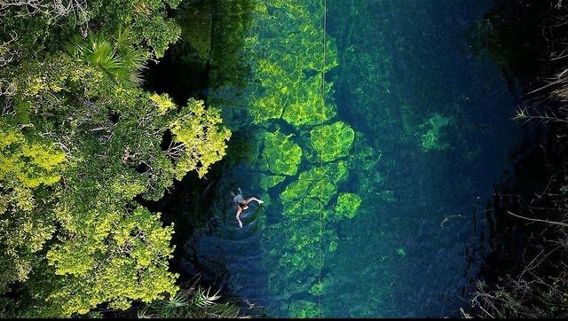 Cenote Escondido, Un manantial transparente oculto en la selva de Tulum
