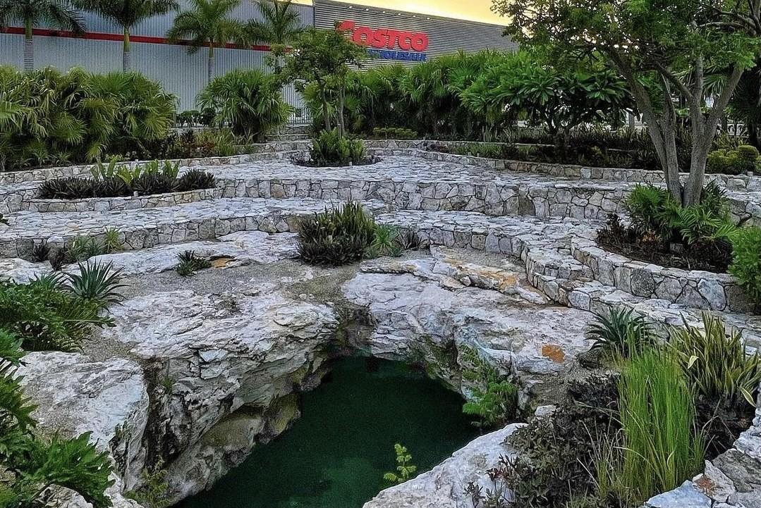 El Cenote de Costco: Una maravilla de Mérida