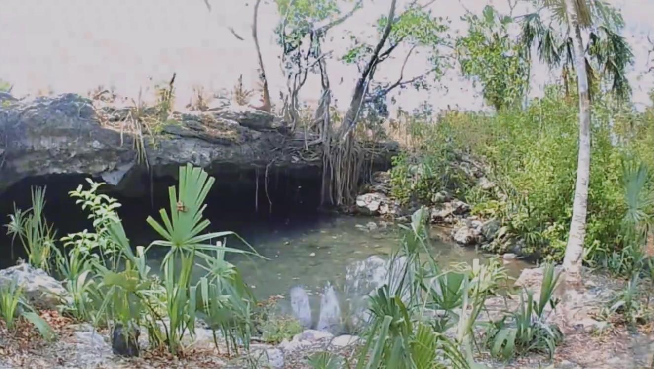 """El escondido Cenote """"Las Tetas"""" de Seybaplaya en Campeche"""
