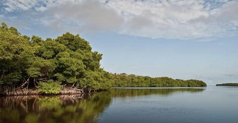 Isla de Piedras e Isla de Jaina, Los secretos mejores guardados de Campeche