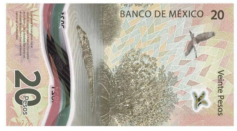 Manglar de Quintana Roo fue incluido en nuevo billete de $20 en México