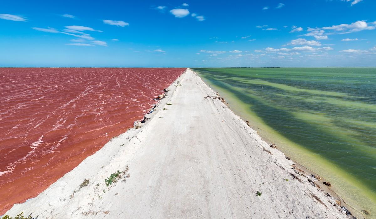 ¿Qué hacer en Río Lagartos? Un paraíso en las costas Yucatecas