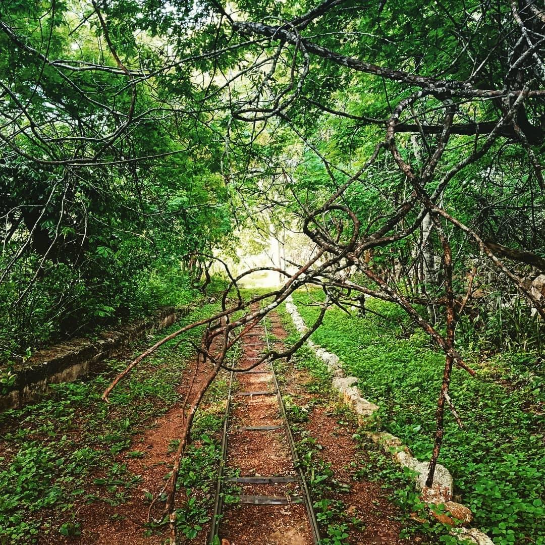 Reserva Ecológica de Cuxtal