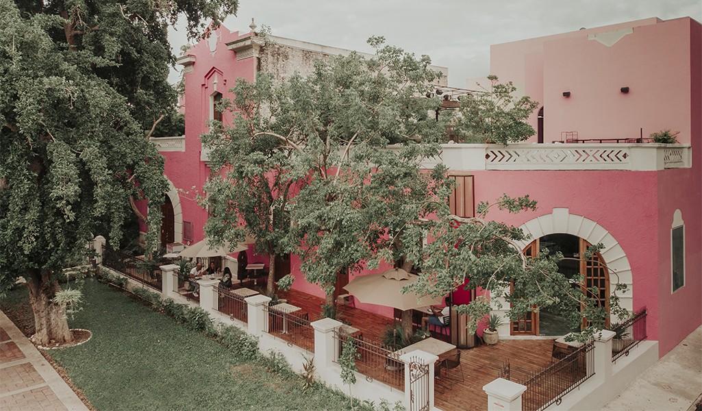 Rosas & Xocolate, El Oásis Romántico de Mérida